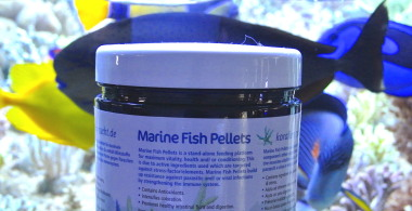 Marine Fish Pellets  NUOVO 2 mm